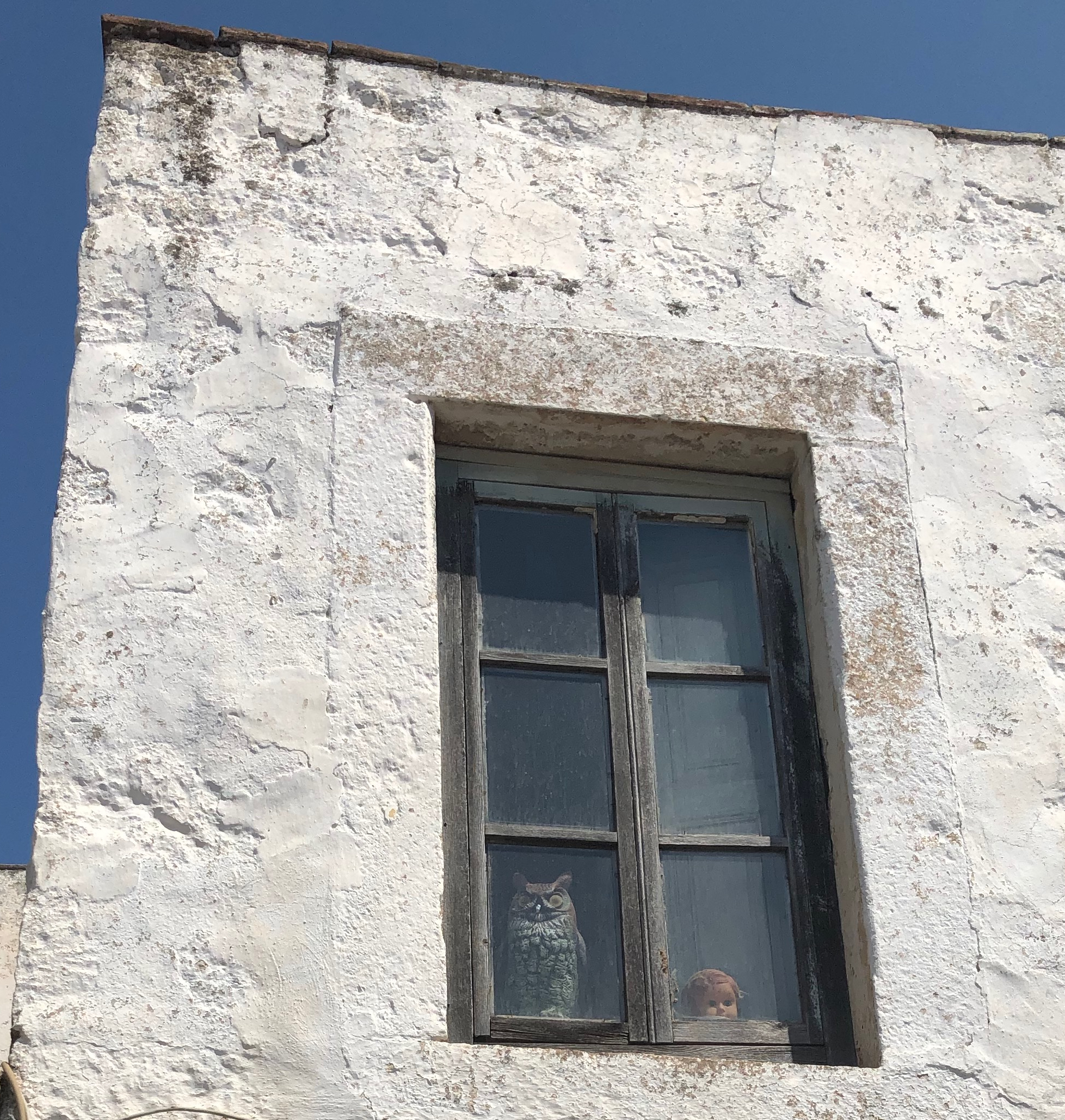 owl in window chora.jpg